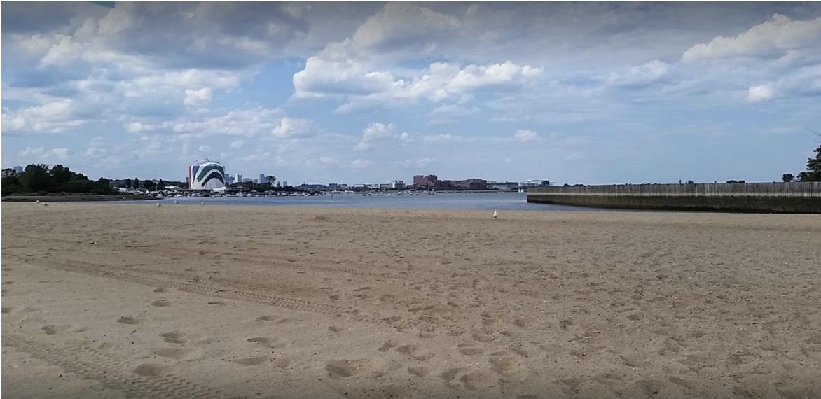 Landscape view of the shoreline