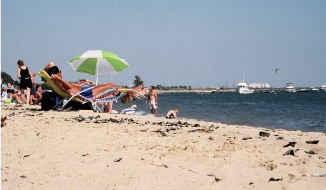 Photo of people sunbathing at the beach on the sand