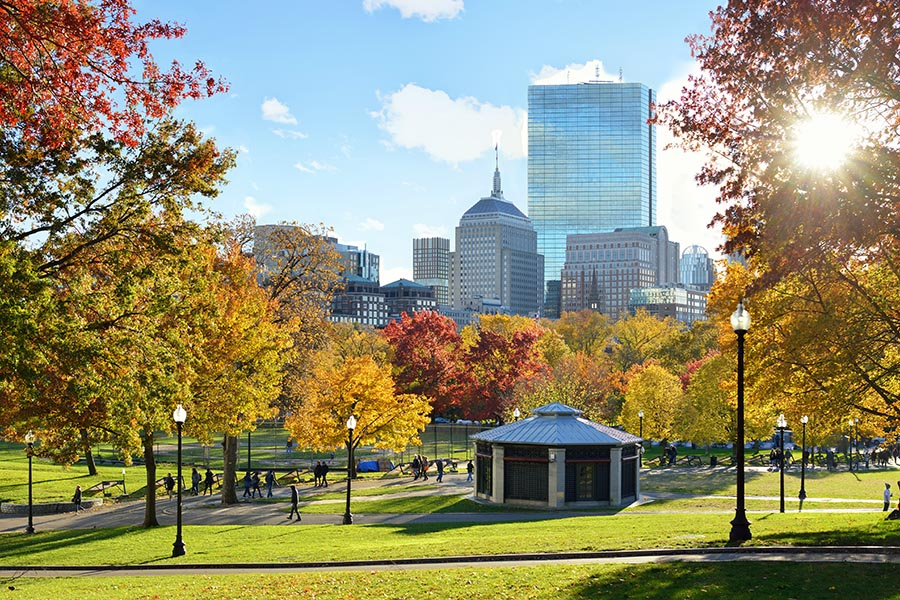 About Our Agency - View of Boston Common on a Sunny Autumn Day, With Large Buildings Rising in the Background